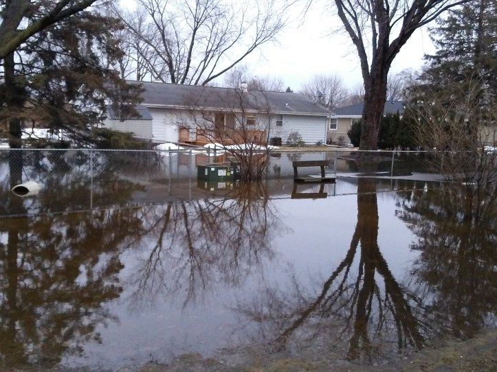 Backyard Flood at Piecemeal Quilts
